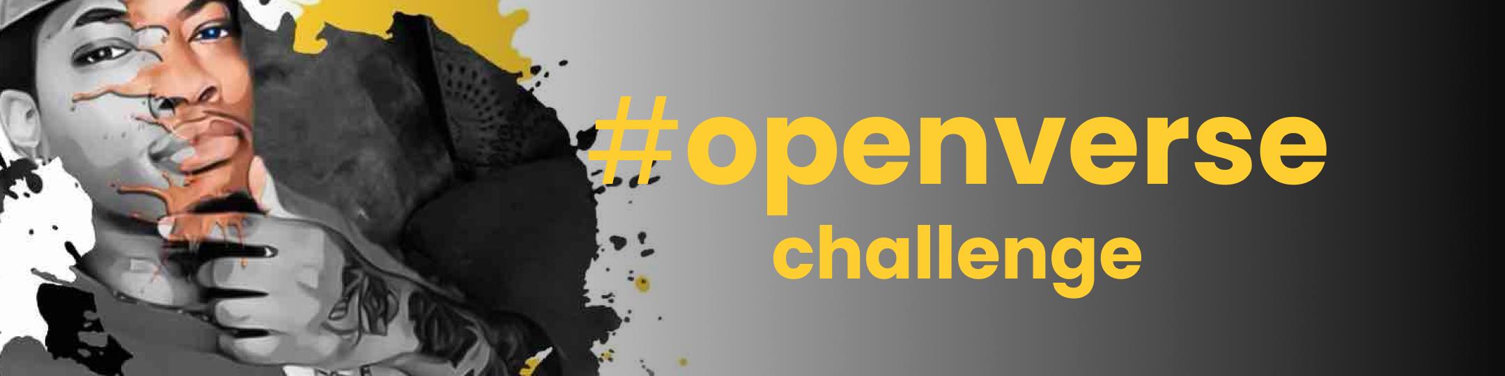 #openverse3 Graphic